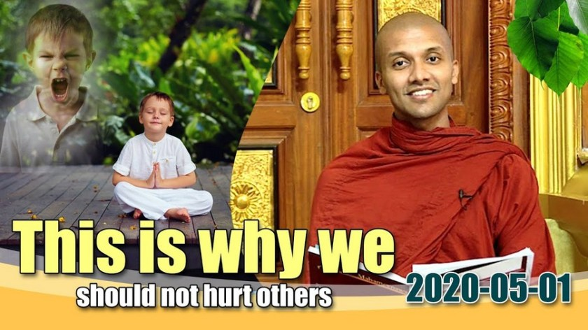 This is why we should not hurt others | Mirror of the Dhamma for Kids
