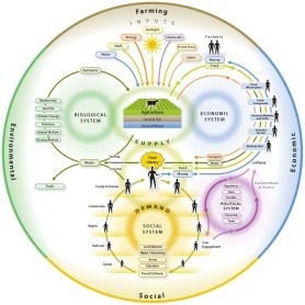 Diagram of the global food system including inputs, outputs and biological, economic and social systems.