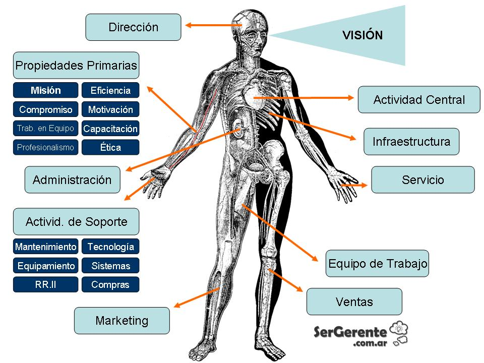 anatomia-de-una-empresa