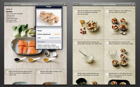 COOKBOOK ipad UI