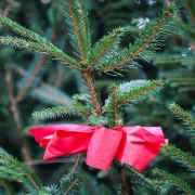 È Natale… rumoroso, silenzioso e surreale quanto basta