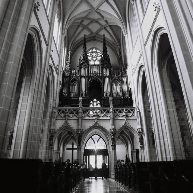 Organ Dom