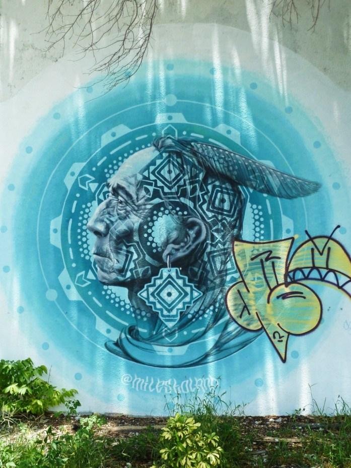 Wynwood indien street art