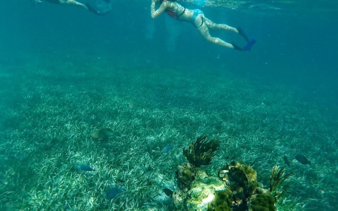 Floride : sur la route des Keys, l'archipel aux 1700 îles