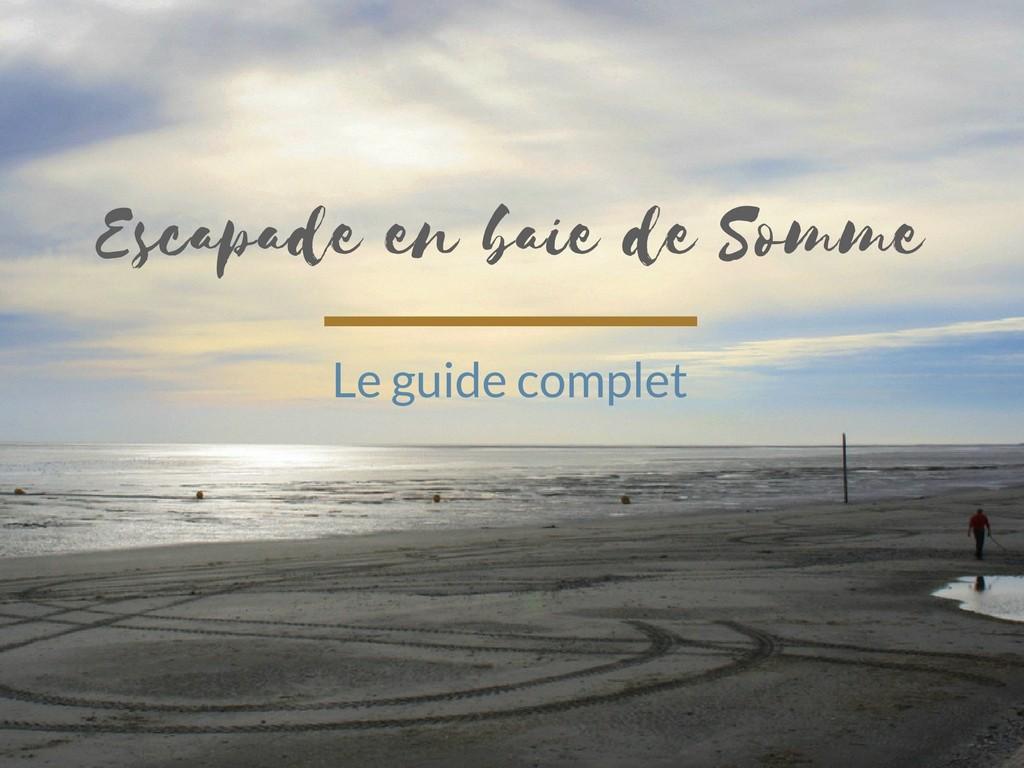 Que voir et que faire en baie de Somme ? Le guide complet pour une escapade réussie!