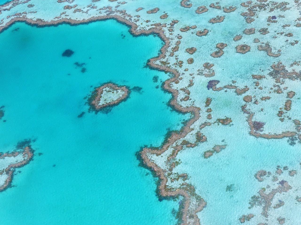 La Grande barrière de corail un incontournable de notre Bucket List