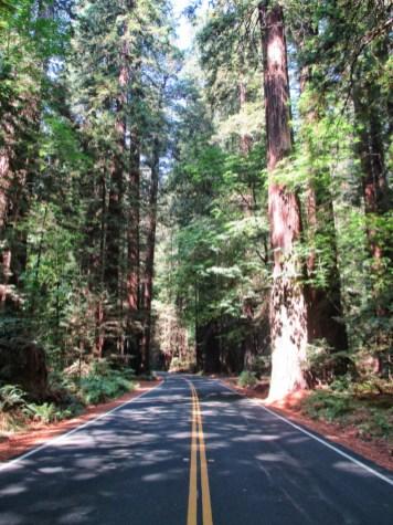 parcs-nationaux-americains