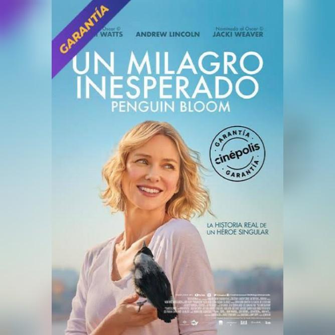 Un Milagro Inesperado  (película) HD 720p latino