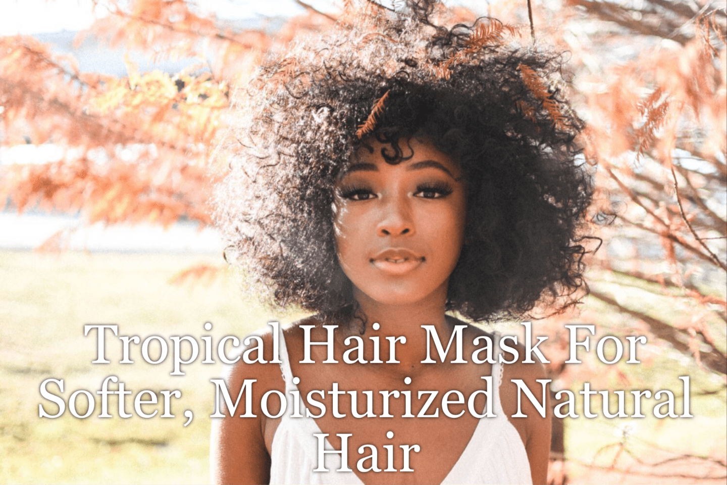 Tropical Hair Mask For Softer, Moisturized Natural Hair. Take advanage of the juicy and popular fruits from nature to replenish moisture back into your hair