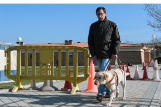 La ONCE nos propone adoptar perros-guías durante su formación.