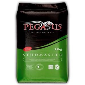 Pegasus Studmaster