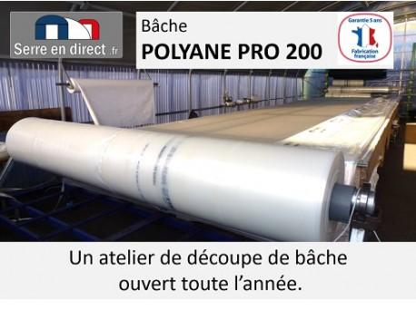 bache de serre sur mesure polyane pro 200