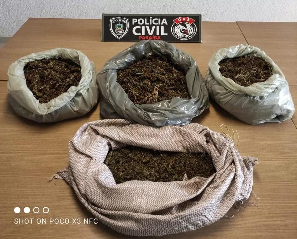 Polícia Civil apreende cerca de 4 kg de skunk em apartamento no Jardim 13 de Maio, em João Pessoa