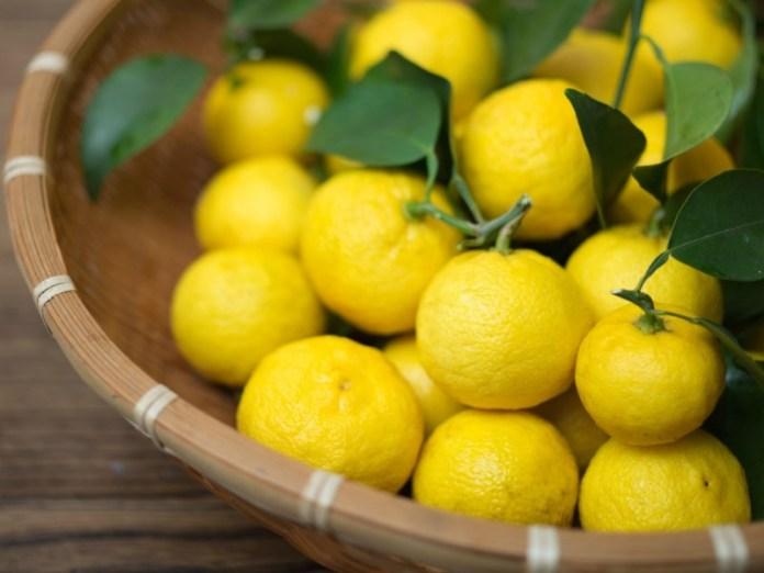 yuzu, buah asal jepang yang memiliki bentuk seperti jeruk dan juga lemon. gambar via: SheKnows