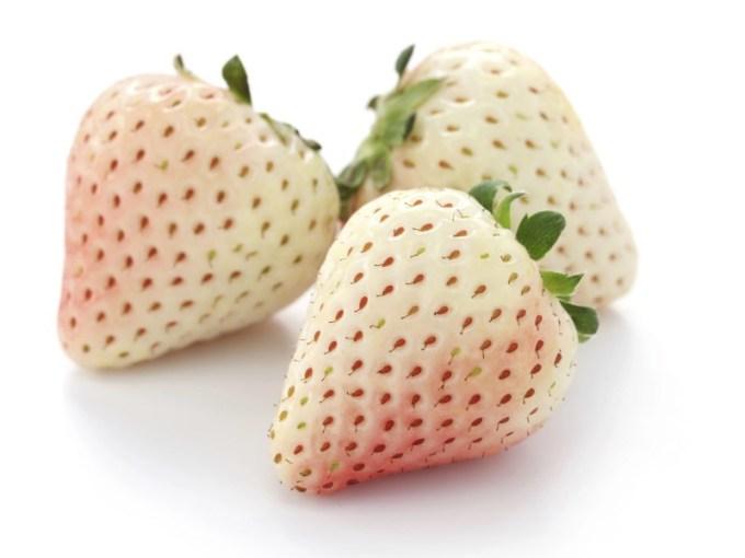 pineberry, adalah perpaduan antara pineapple dan juga strawberry. gambar via: Backyard Fruit