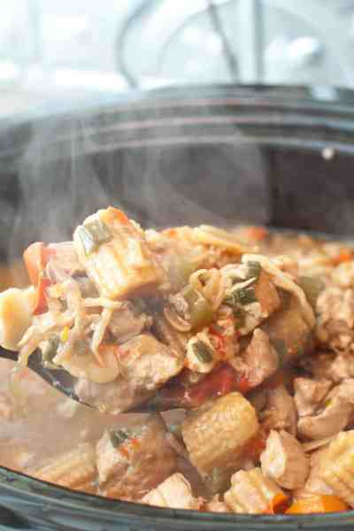 Chicken Chow Mein made right at home in your crock pot! Easier (and cheaper) than take out!