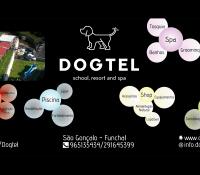Dogtel School