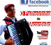 PALHEIRINHO DO ACORDEAO