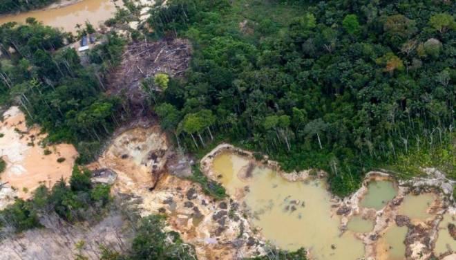 Grandes extensiones de la Amazonía venezolana han sido afectadas por la minería ilegal. Crédito de la imagen: Cortesía de Javier Mesa para SciDev.Net.