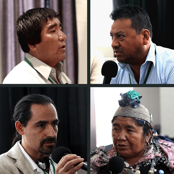 De izq. sup. a der. inf.: Hugo Arpasi (Perú), Fernando López y Emanuel Gómez (México). Ana Llao (Chile). Fotos: Jonathan Hurtado/Servindi