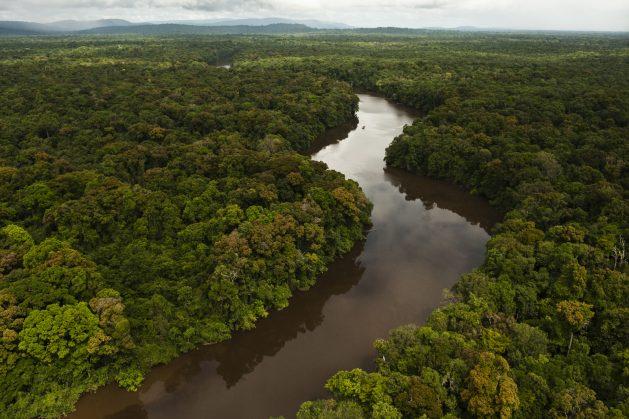 El río Essequibo es el más largo de Guyana, y el más largo entre el Orinoco y el Amazonas. Como se espera que la producción petrolera en Guyana comience en el primer trimestre de 2020, los especialistas señalan que el incremento de riesgos ambientales de más pozos petroleros requiere mayor capacidad de comprender y gestionar los riesgos. Crédito: Cortesía de Conservation International Guyana.
