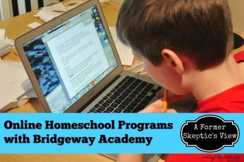 Online Homeschool Programs - A Former Skeptic's View