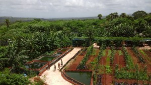 Kebun Mekon Indah