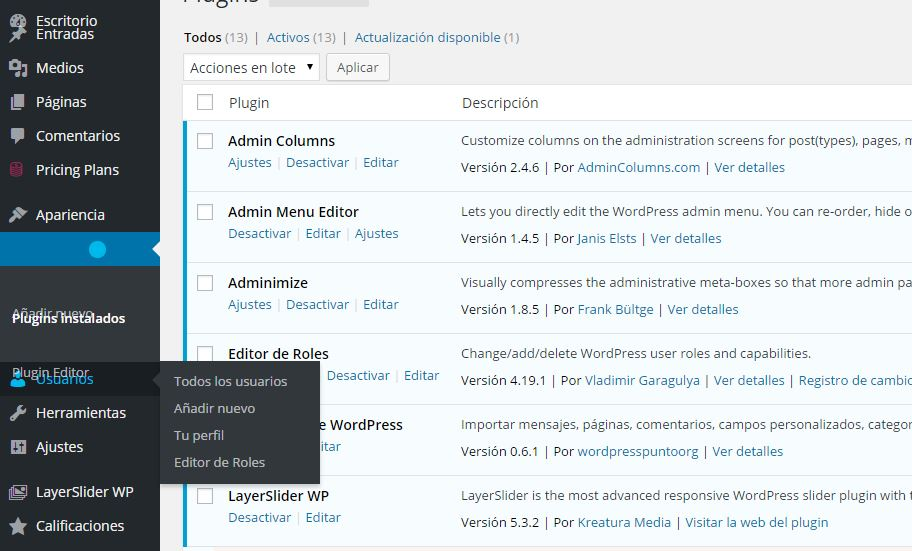 Error de visualización en admin de WordPress con Chrome