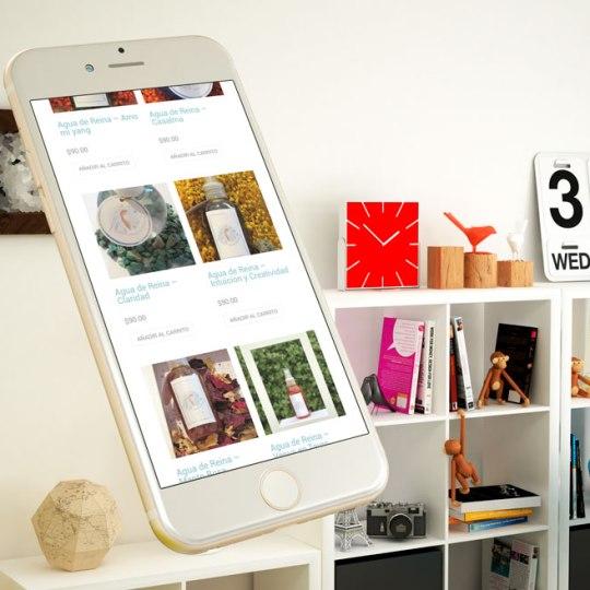 diseño web de tienda online para Reina Cósmica