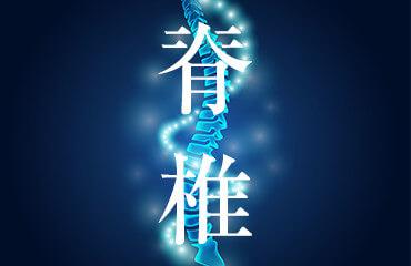 腰痛治療セミナー2017