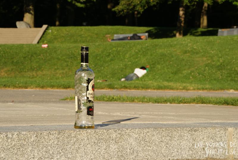 blog canada montreal pvt seth lise photo sunrise urbain soleil crépusucle drunk bottle bacardi bourre