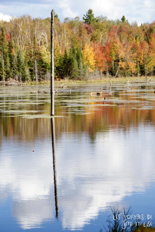 blog pvt canada pvtiste quebec mont orford parc photgraphie voyage couple ete indien summer indian couleur colors nature tour du monde lac castor
