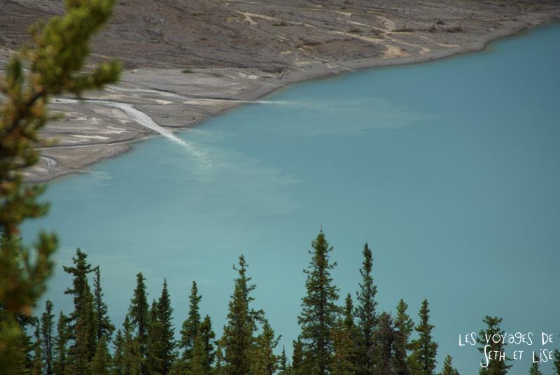 blog pvt photographie pvtiste canada alberta rocheuses rockies moutains voyage montagne couple tour du monde nature parc national lac lake peyto