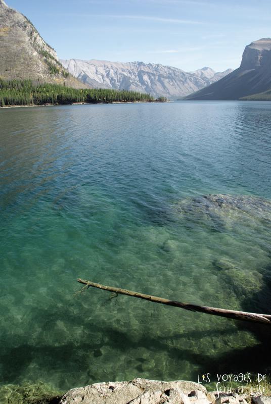 blog photogaphie pvt pvtiste canada alberta rocheuses montagne couple voyage tour du monde paysage nature lac lake minnewanka tree arbre