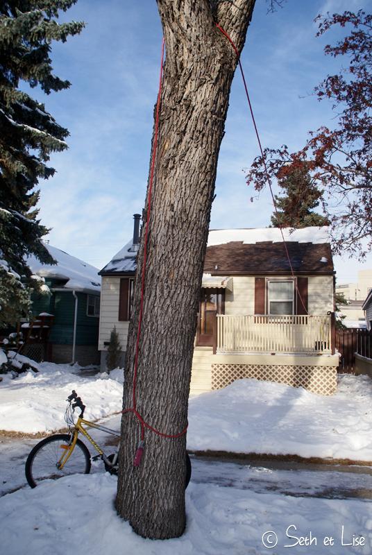 blog voyage canada pvt edmonton electricité insolite drole voiture hiver froid