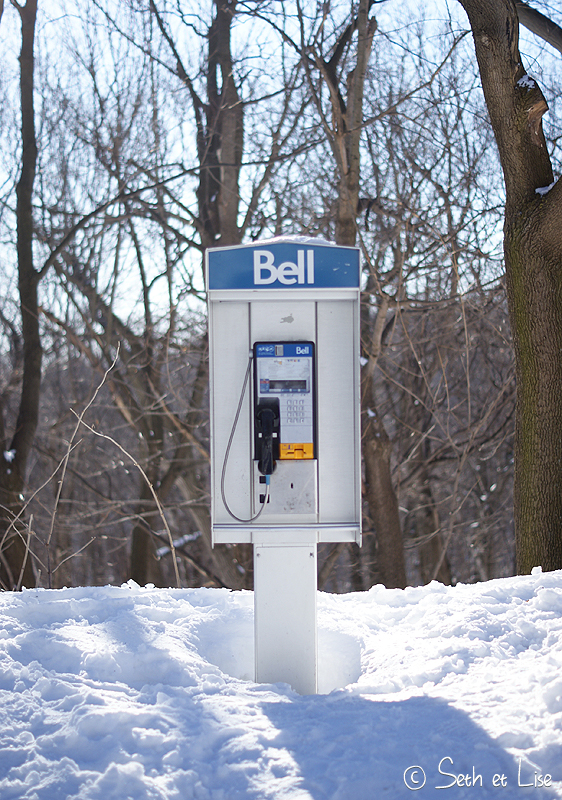 blog pvt canada voyage photographie montreal mont royal hiver neige bell telephone cabine