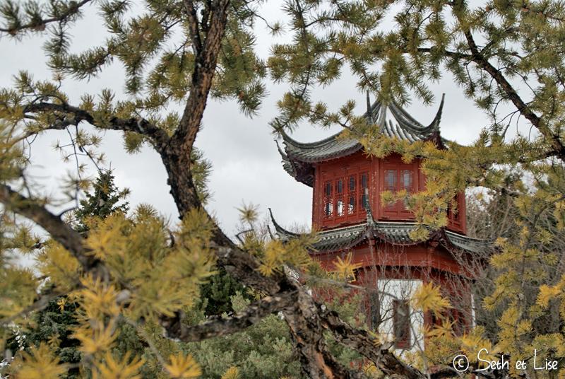 blog pvt canada montreal photographie couple tour du monde botanic garden jardin botanique chinois temple japonais