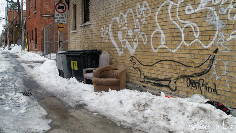 blog voyage canada pvt photo seth lise montreal tag graffiti dinosaure