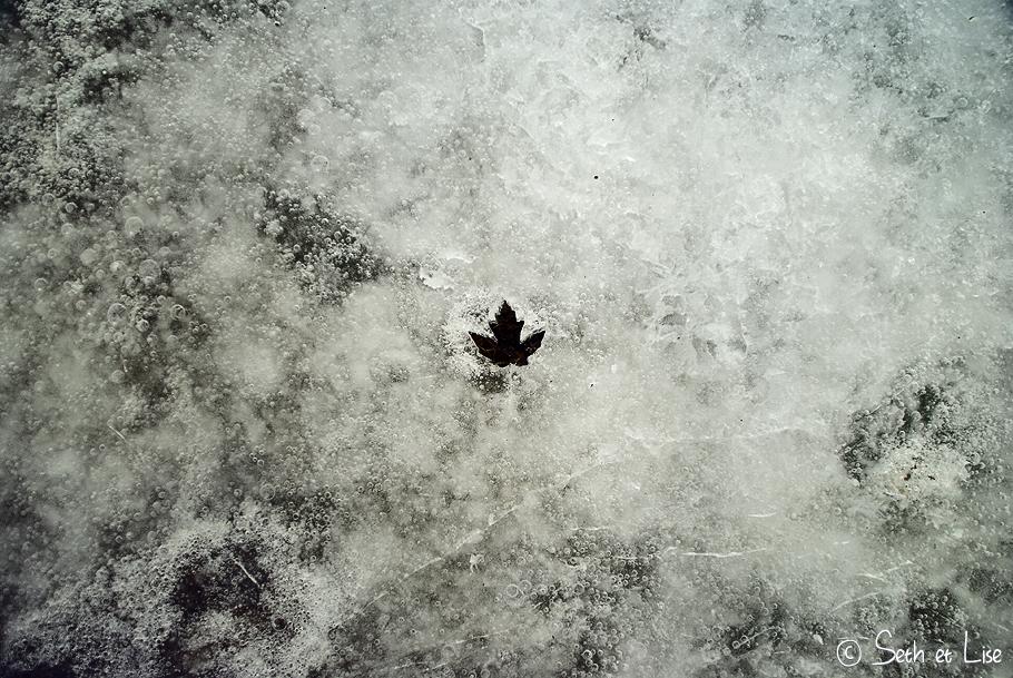 La photo du mois (Avril) – Du blanc et du noir