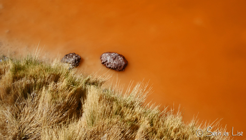 macro laguna colorada