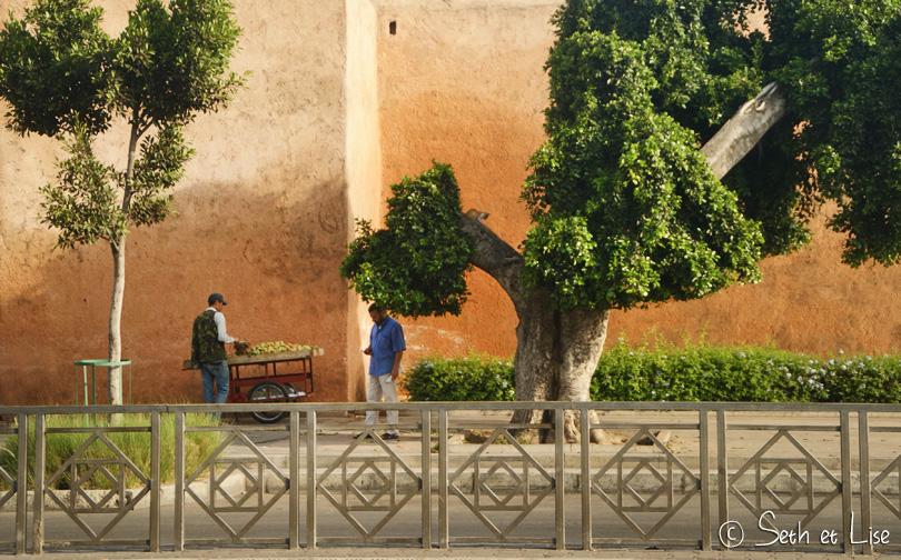 rabat medina wall