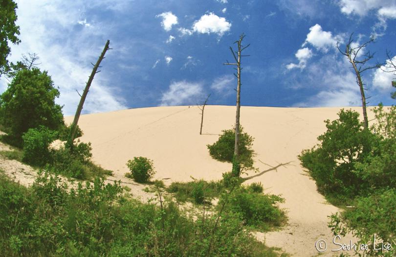 dune pilat