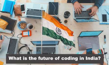 What is the future of coding in India? Programming skills in India?