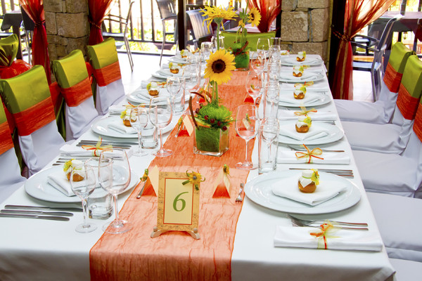 wedding catering in udaipur