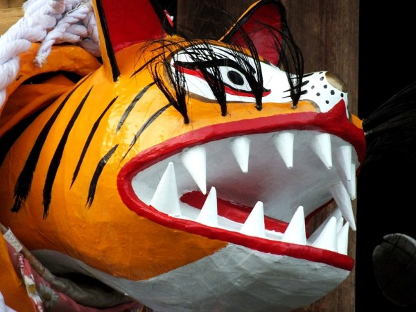Kagawa Tiger