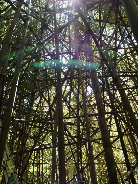 Big Bambu Preview - 6