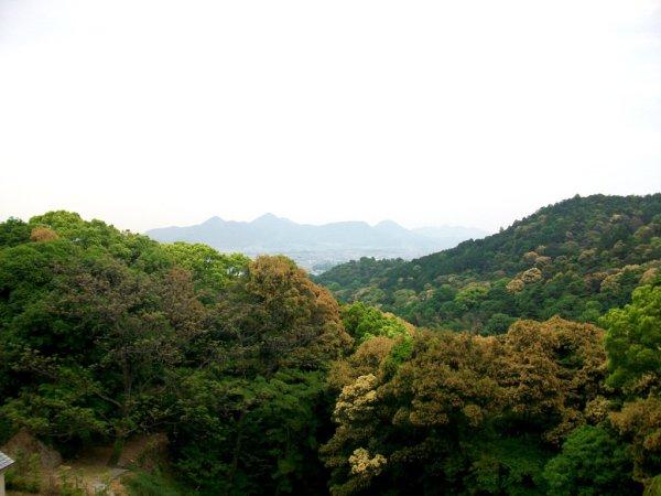 Climbing Konpira-san - First Stop - 07