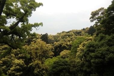 Climbing Konpira-san - Part Four - 08