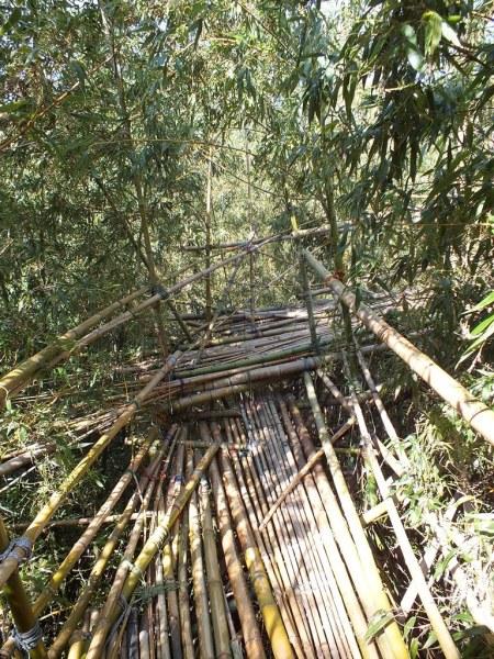 Big Bambu - Teshima - 12