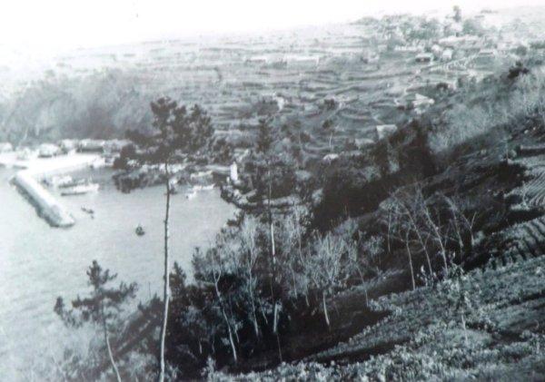 Ibukijima - 31